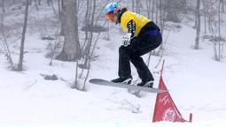 SNOWBOARD - FIS WC Sotschi, SBX, Damen, Quali